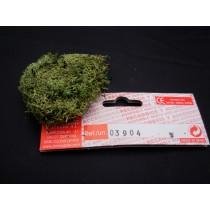 Green Moss (Domus)